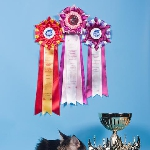 Alliance Aray - Best of Best II, 7 WCF-ring adult, Best Male & Best Adult mono-show!!!