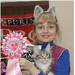 Alliance Diva - 2 место WCF-ring Junior, Best Kitten
